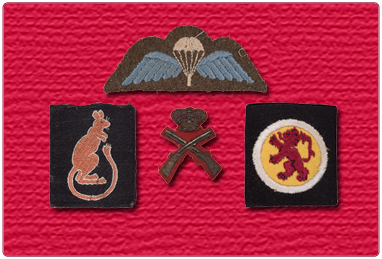 Military Badges and Insignia