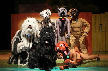 Hairy Maclary and friends on stage