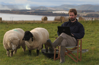 James Oswald, bestselling crime writer with sheep in countryside