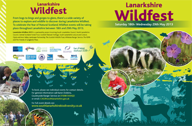 Wildfest brochure