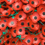 image of poppies used with kind permission from Legion Scotland - http://www.legionscotland.org.uk/remembrance/poppy-appeal/