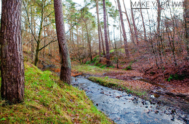 Jock's Burn and the Edgelands of Carluke by Make Your Way project photographer Mark Archibald