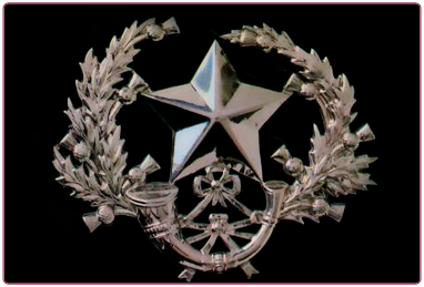 Image forThe Cameronians (Scottish Rifles)
