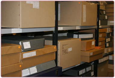 Image forCollections inventory and digitisation